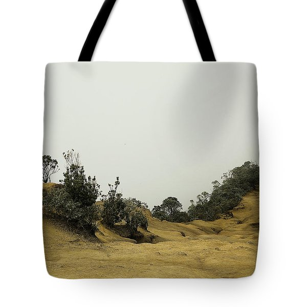 Misty Path Tote Bag by Joanna Madloch