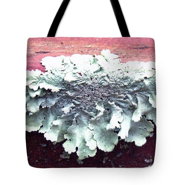 Mold Portrait Tote Bag by Barbara McDevitt
