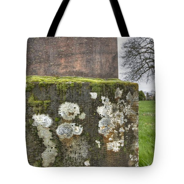 Moldy Above And Below Tote Bag by Jean Noren