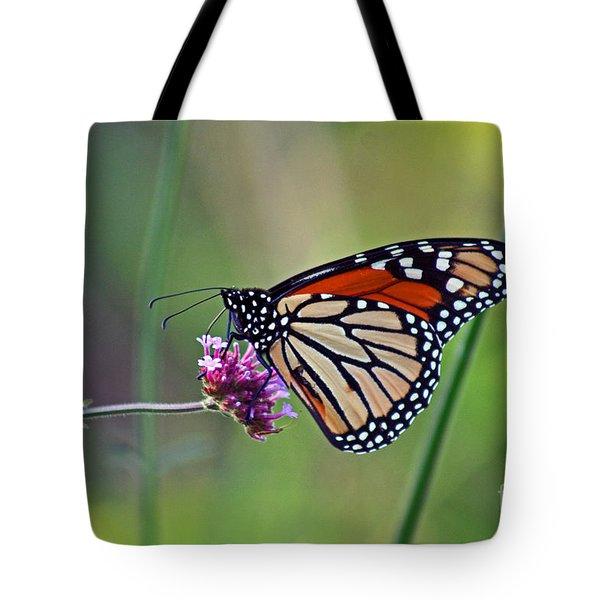 Monarch Butterfly In Garden Tote Bag by Karen Adams