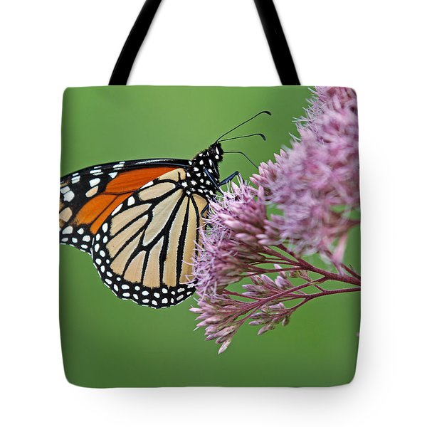 Monarch Butterfly Photography Tote Bag by Juergen Roth