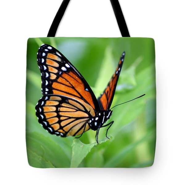 Monarch Dreaming Tote Bag by Neal  Eslinger