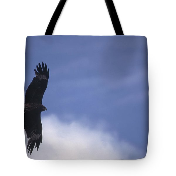 Mongolia Tote Bag by Anonymous