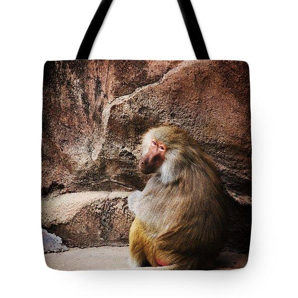 Monkey Business Tote Bag by Karol Livote
