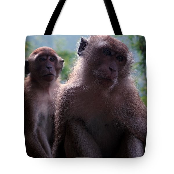 Monkey's Attention Tote Bag by Justin Woodhouse