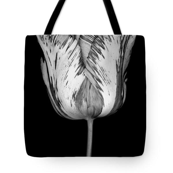 Monochrome streaked tulip Tote Bag by Oscar Gutierrez