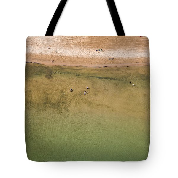 Montrose Beach Dog Park Tote Bag by Adam Romanowicz