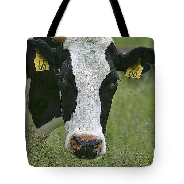 Moo Moo Eyes Tote Bag by Deborah Benoit