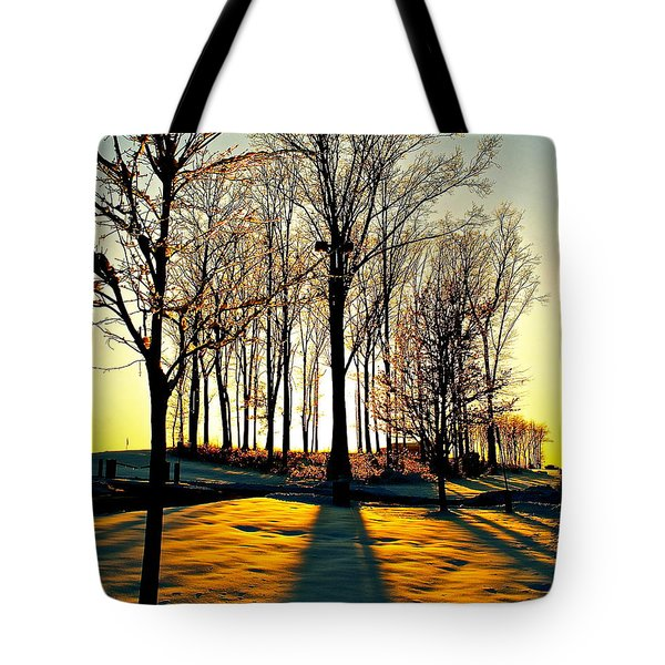 Mood Lighting Tote Bag by Frozen in Time Fine Art Photography