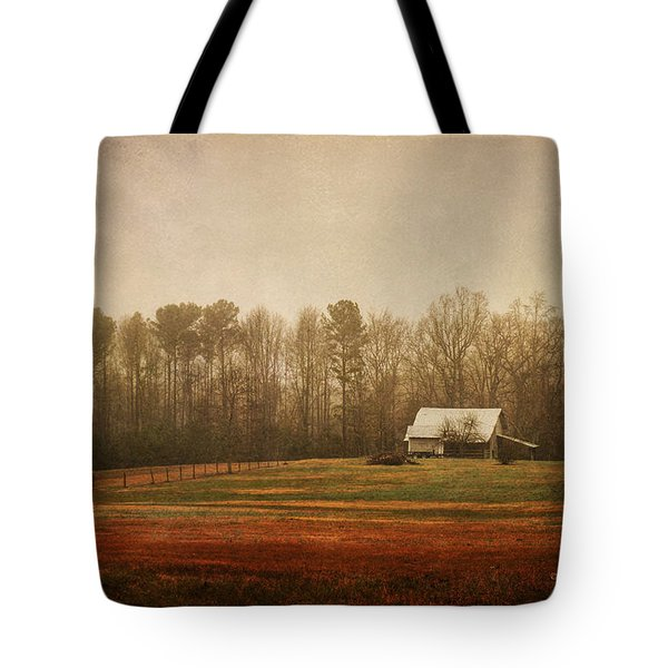 Moody Morning Stillness Tote Bag by Paulette B Wright