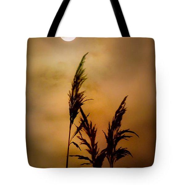 Moonlit Stalks Tote Bag by Gary Heller