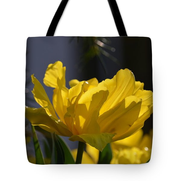 Moonlit Tulips Tote Bag by Maria Urso