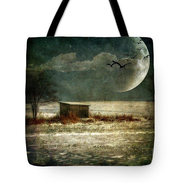 Moonstruck Tote Bag by Lois Bryan