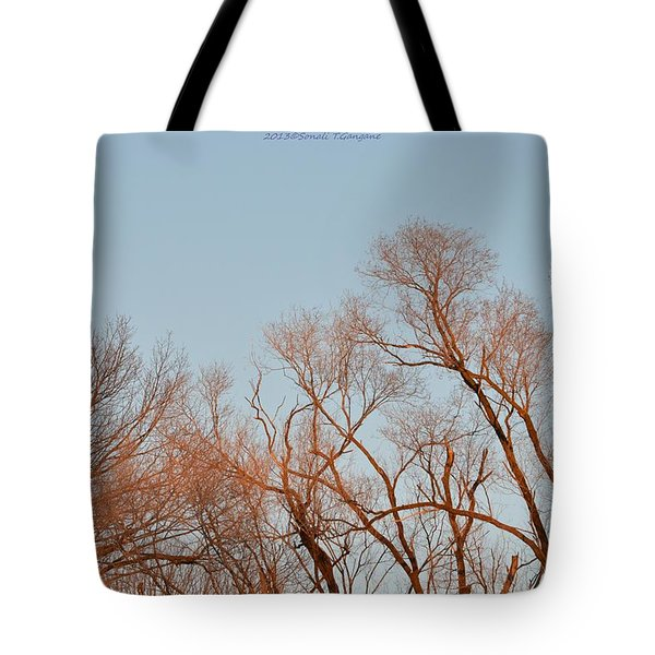 Morning Coloured In Fall Tote Bag by Sonali Gangane