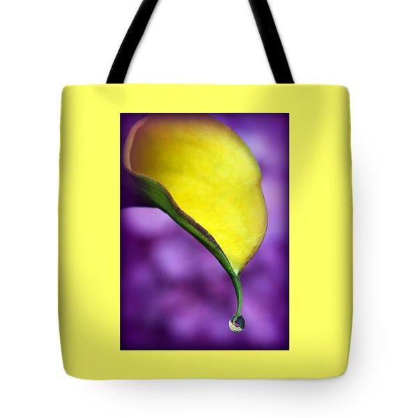 Morning Dew Tote Bag by Karen Wiles