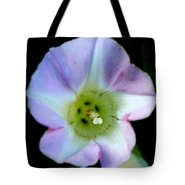 Morning Glory Floral Window Tote Bag by Neal  Eslinger