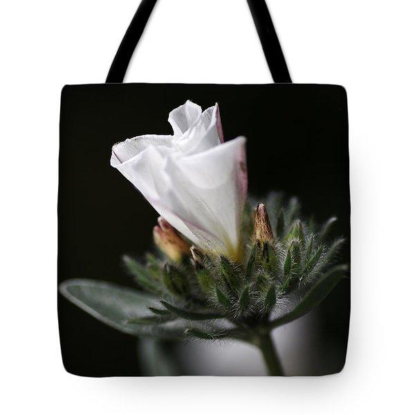 Morning Glory Tote Bag by Joy Watson
