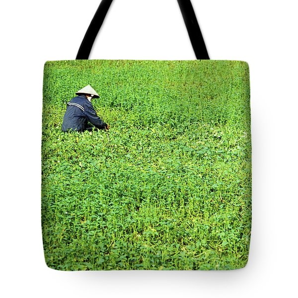 Morning Glory Tote Bag by Rick Piper Photography