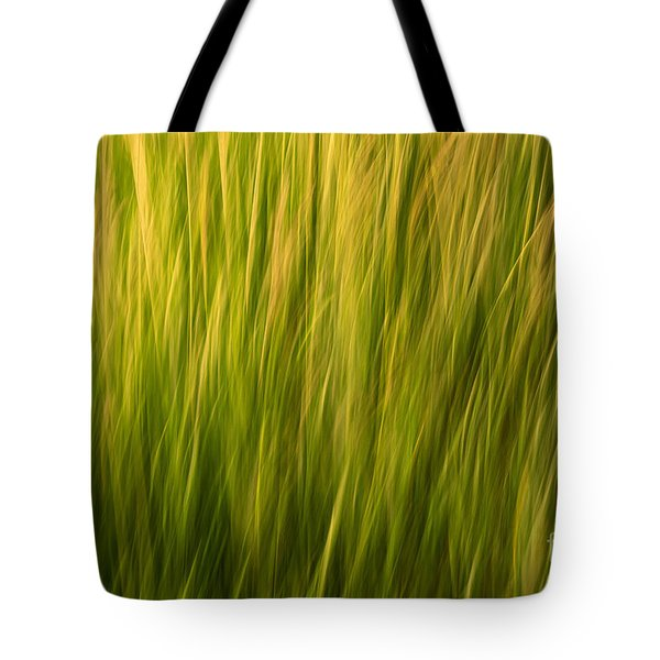 Morning Glory Tote Bag by Sandi Mikuse