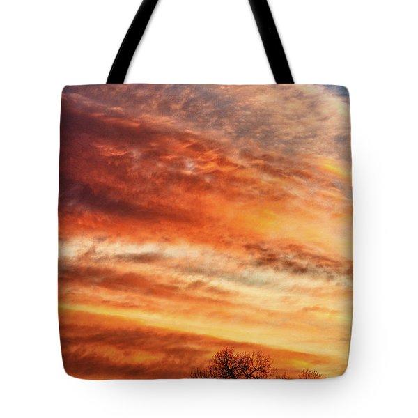 Morning Has Broken Tote Bag by James BO  Insogna