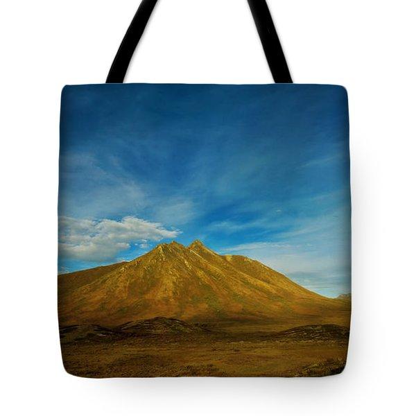 Morning Light  Tote Bag by Priska Wettstein