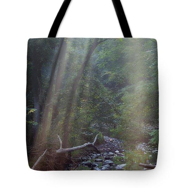 Morning Light Tote Bag by Tom Mc Nemar