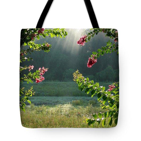 Morning Marsh Tote Bag by Carol Groenen