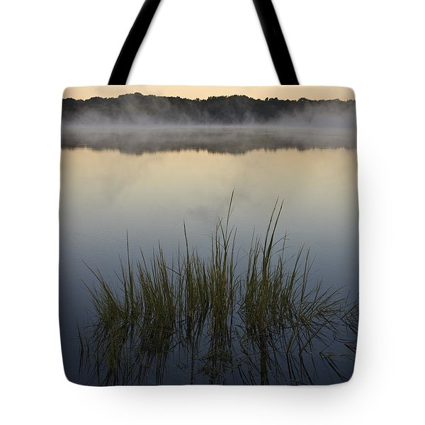 Morning Mist at Sunrise Tote Bag by David Gordon
