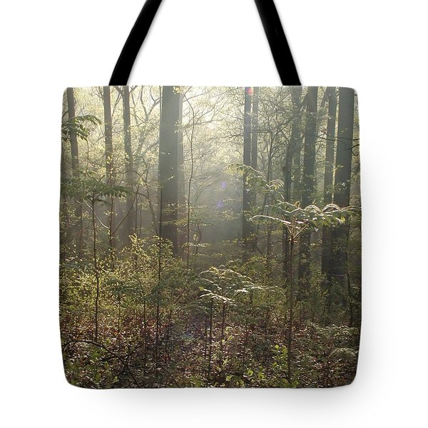 Morning Mist In The Forest Tote Bag by Bill Cannon