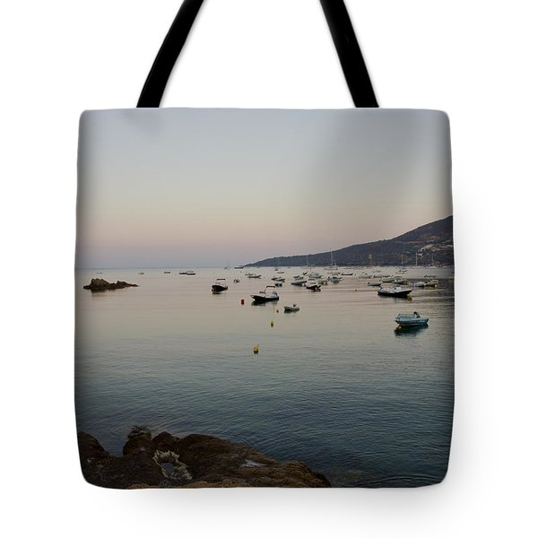 Morning Moon Tote Bag by Sophie De Roumanie