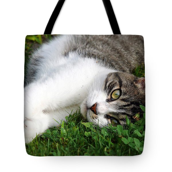 Morning Stretch Tote Bag by Christina Rollo