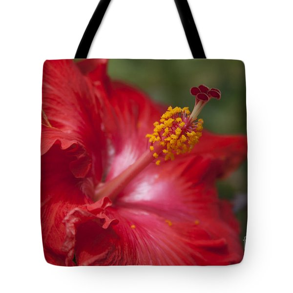 Morning Whispers Tote Bag by Sharon Mau