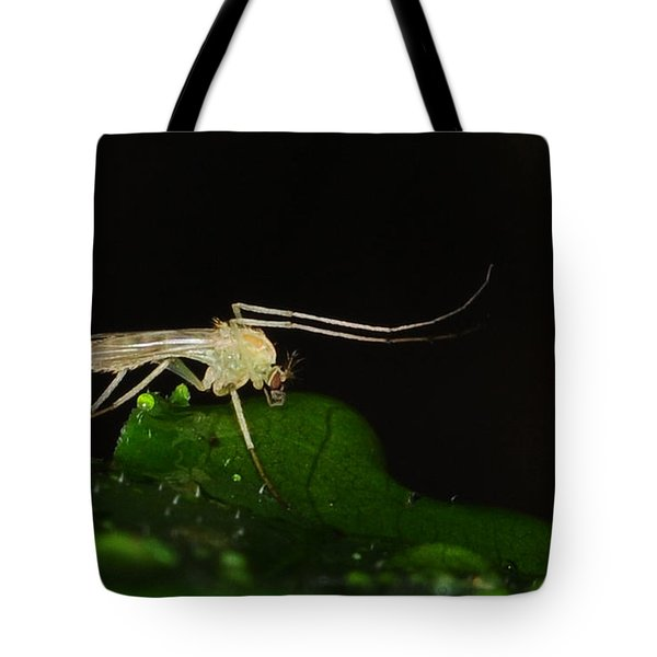 Mosquito Tote Bag by Paul Ward