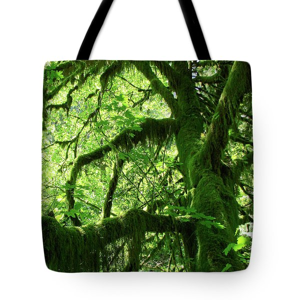Mossy Tree Tote Bag by Athena Mckinzie