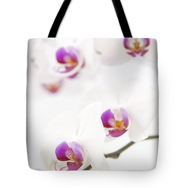 Moth Orchid Tote Bag by Anne Gilbert