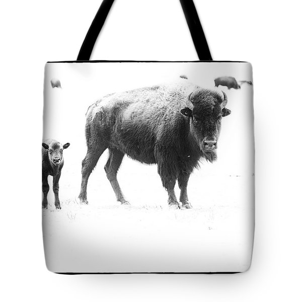 Mother Bison And Her Calf Tote Bag by Melany Sarafis