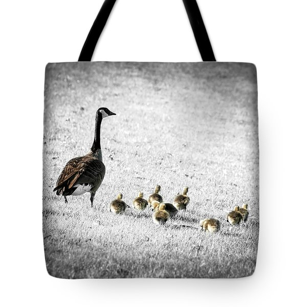 Mother goose Tote Bag by Elena Elisseeva