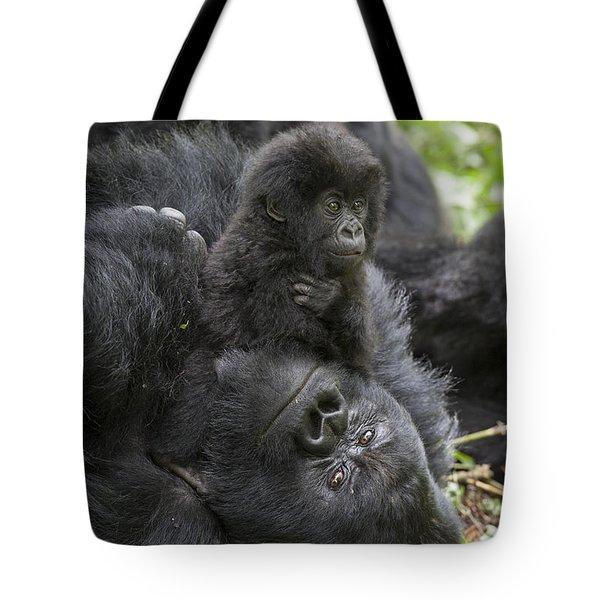 Mountain Gorilla Baby Playing Tote Bag by Suzi  Eszterhas