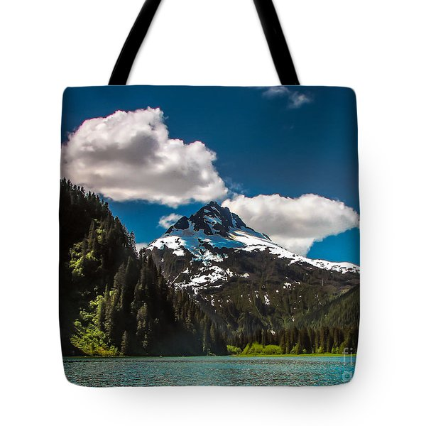 Mountain View Tote Bag by Robert Bales
