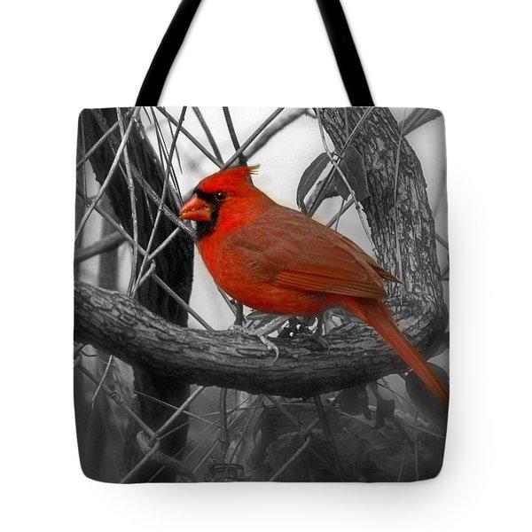Mr Cardinal -card Tote Bag by Sandra Clark