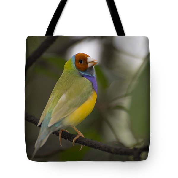 Multicolored Beauty Tote Bag by Penny Lisowski