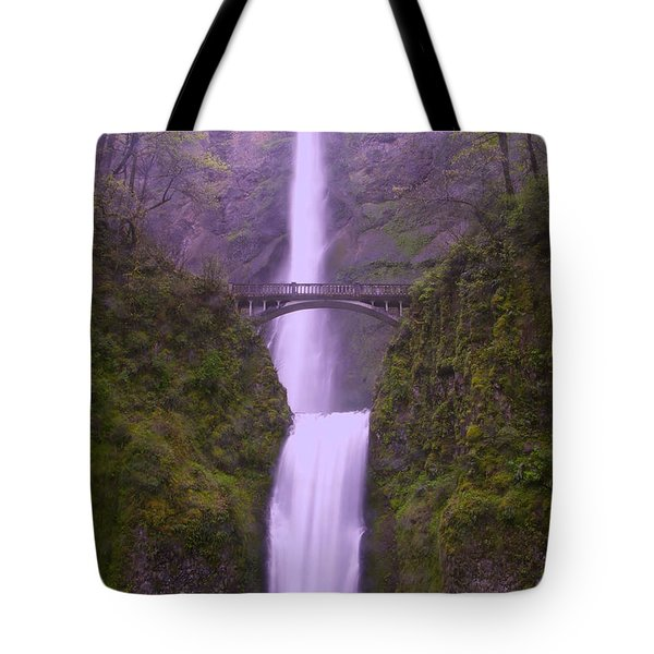 Multnomah In The Drizzling Rain Tote Bag by Jeff  Swan