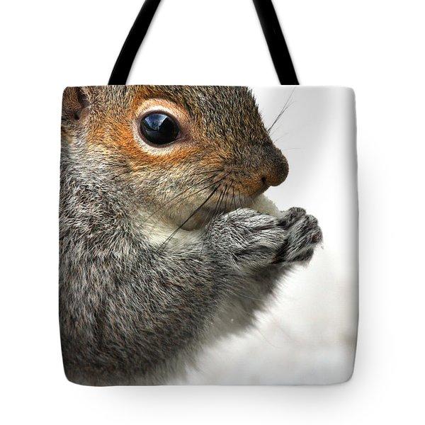 Munching Tote Bag by Karol Livote