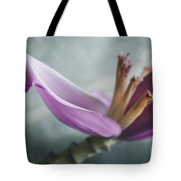 Musa Ornata - Pink Ornamental Banana Flower - Kepaniwai Maui Hawaii  Tote Bag by Sharon Mau