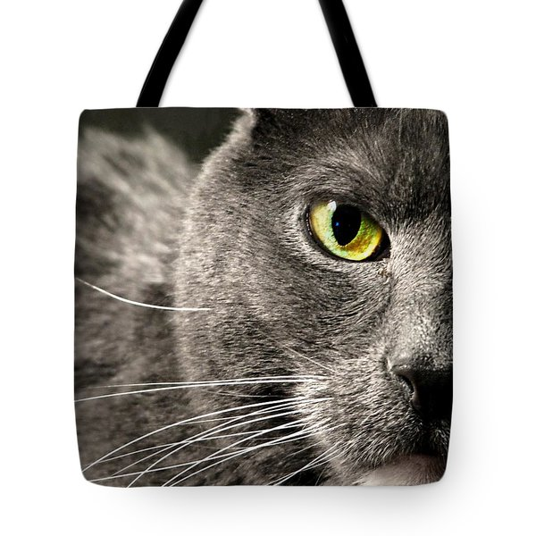 My Eye's On You Tote Bag by Diana Angstadt