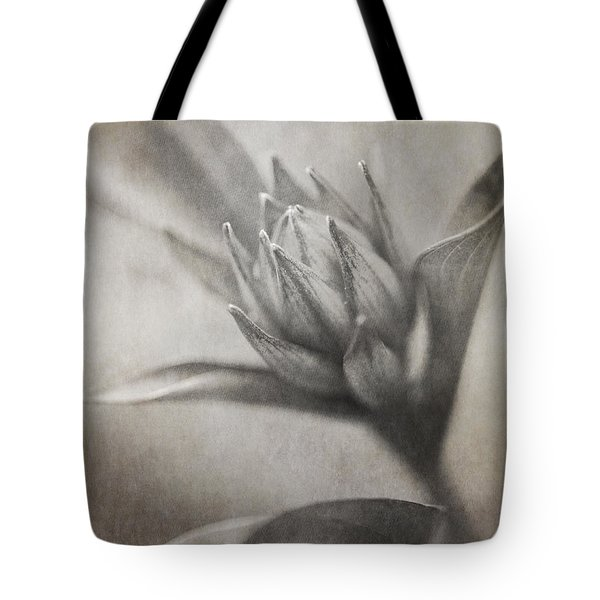 Mystic Anticipation Tote Bag by Dale Kincaid