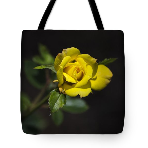 Mystic Yellow Rose Tote Bag by Christina Rollo
