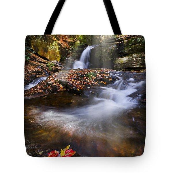 Mystical Pool Tote Bag by Debra and Dave Vanderlaan