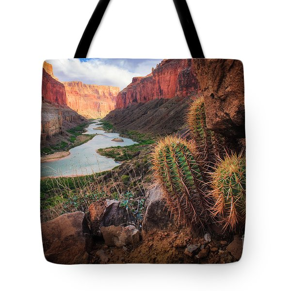 Nankoweap Cactus Tote Bag by Inge Johnsson