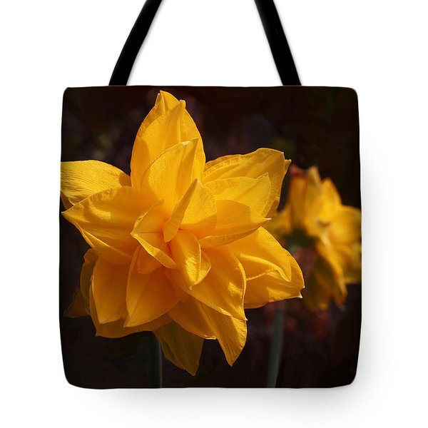Narcissus Sweet Sue In Full Bloom Tote Bag by Rona Black